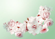 Beautiful horizontal frame with a bouquet of white roses with rain drops. Vintage toning image. Overhead view stock photo