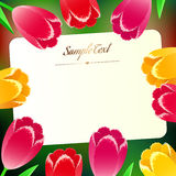 Beautiful horizontal rectangular greating card with spring flowe Stock Images