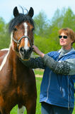 Beautiful horse Royalty Free Stock Photography