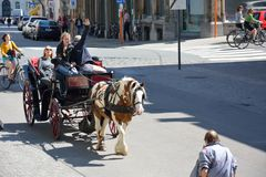 Beautiful horse and Carage. GHENT, BELGIUM, 1 JULY 2014:Some Unidentified People enjoying a tour by horse in the streets of Ghent Stock Image