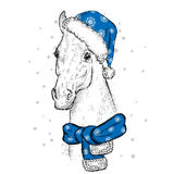 Beautiful horse in a Christmas hat and scarf. Santa Claus. New Year`s and Christmas. Beautiful horse in a Christmas hat and scarf. Vector illustration for a Stock Photos