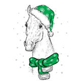 Beautiful horse in a Christmas hat and scarf. Santa Claus. New Year`s and Christmas. Beautiful horse in a Christmas hat and scarf. Vector illustration for a Royalty Free Stock Images
