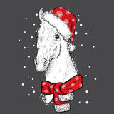 Beautiful horse in a Christmas hat and scarf. Santa Claus. New Year`s and Christmas. Beautiful horse in a Christmas hat and scarf. Vector illustration for a Stock Photography
