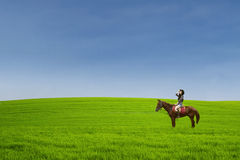 Beautiful horse rider at green field Stock Photos