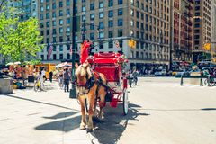 Beautiful Horses and Carriages in Central Park in New York City. New York City/USA stock image