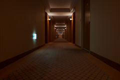 Beautiful hotel corridor with carpet Royalty Free Stock Images