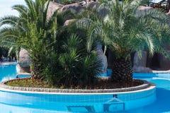 Beautiful hotel swimming pool befor sunrise Stock Photography