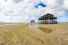 Beautiful house in the basin of Arcachon. Beautiful black wood house on stilts in the basin of Arcachon on the island with birds Stock Photos