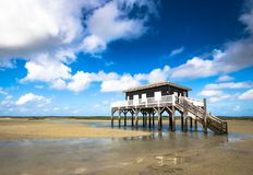 Beautiful house in the basin of Arcachon. Beautiful black wood house on stilts in the basin of Arcachon on the island with birds Royalty Free Stock Photos