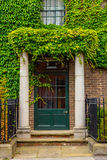 Beautiful house covered with green ivy Stock Images