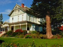 Beautiful house and  frontyard. Beautiful victorian house with large fron tyard. Green grass, roses and a large cedar tree Stock Image