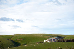 Beautiful house in green field, South Island, New Zealand Royalty Free Stock Photos