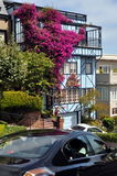 Beautiful house at Lombard Street, San Francisco. Unique beautiful house with bougainvillea wall at Lombard Street, San Francisco (California Stock Photography
