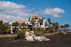 Beautiful house with palm trees on the coast of Tenerife, Canary. Beautiful house with palm trees on the coast of Playa de las Americas .Tenerife, Canary islands Royalty Free Stock Photo