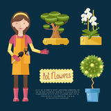 Beautiful house plants. The girl is with home plant in hands. Her hobby - growing domestic flower plants Stock Photo
