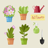Beautiful house plants. Set of single home potted plants. Domestic flowers. Vector illustration royalty free illustration