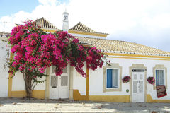Beautiful house in Portugal royalty free stock images