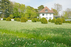 Beautiful house with a stunning green field Stock Image