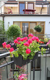 Beautiful house terrace with a lot of flowers Royalty Free Stock Photos