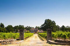 Beautiful house in a vineyard. Farmer house in a vineyard Royalty Free Stock Photography