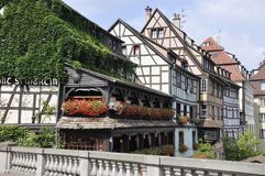 Houses natural fresh decoration landscape from Strasbourg