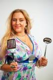 Beautiful housewife Stock Image