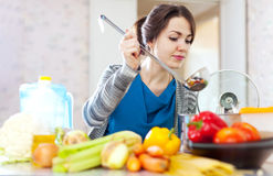 Beautiful housewife  with ladle Royalty Free Stock Photography