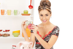 Beautiful housewife with purse and money Stock Image
