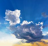 The beautiful huge cumulus cloud looks like an animal. The sun`s Royalty Free Stock Images