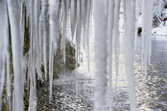 Beautiful and huge icicles in river cascade Stock Images