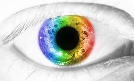 Beautiful human eye, macro, close up blue, green, yellow royalty free stock image