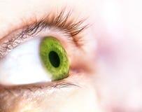 Beautiful human green eye, macro, close up Royalty Free Stock Image