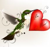 Beautiful humming bird holding a big red heart with signature be Stock Image