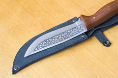 Beautiful hunting knife and a case for the knife. Stock Photos
