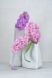 Beautiful hyacinth flowers . Stock Photography