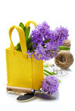 Beautiful Hyacinths and garden tools Royalty Free Stock Photography