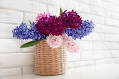 Beautiful hyacinths in wicker pot on table against wall, space for text. Spring flowers. Beautiful hyacinths in wicker pot on table against brick wall, space for royalty free stock photo