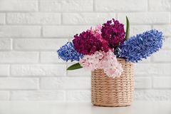 Beautiful hyacinths in wicker pot on table against wall, space for text. Spring flowers. Beautiful hyacinths in wicker pot on table against brick wall, space for royalty free stock images