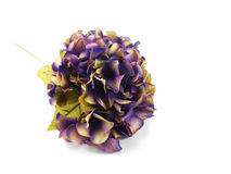 Beautiful hydrangea artificial flower bouquet Royalty Free Stock Image