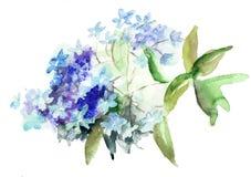 Beautiful Hydrangea blue flowers. Watercolor illustration vector illustration