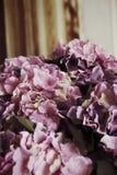 Beautiful hydrangea flowers. Beautiful hydrangea of artificial flowers Royalty Free Stock Images
