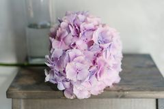 Beautiful hydrangea flowers in a vase on a table . Bouquet of light lilac and pink flower. Decoration of home. Wallpaper. And background Royalty Free Stock Photos