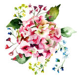 Beautiful Hydrangea flowers. Watercolor illustration Royalty Free Stock Photos