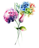 Beautiful Hydrangea and Tulips flowers Stock Images