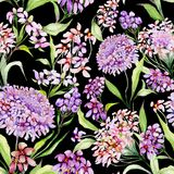 Beautiful iberis flowers with green leaves on black background. Seamless floral pattern. Watercolor painting. Hand painted illustration. Can be used for fabric Stock Photography