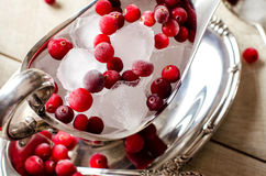 Beautiful ice cubes and red berries closeup. Stock Photos