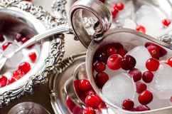 Beautiful ice cubes and red berries closeup. Royalty Free Stock Image