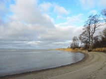 Curonian spit , ice and trees in winter , Lithuania Royalty Free Stock Image