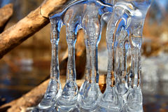 Beautiful Ice Formations Illinois. Natural ice sculptures along the Kishwaukee River in northern Illinois Royalty Free Stock Image
