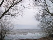 Curonian spit , ice and trees in winter , Lithuania Stock Images
